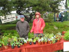 Friends of Barnhill Rock Garden plant stall
