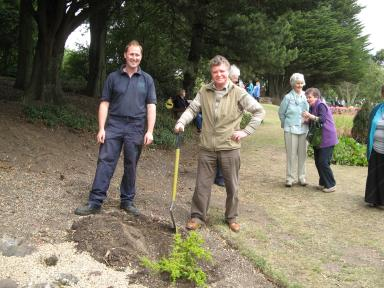 Scree bed gala day planting