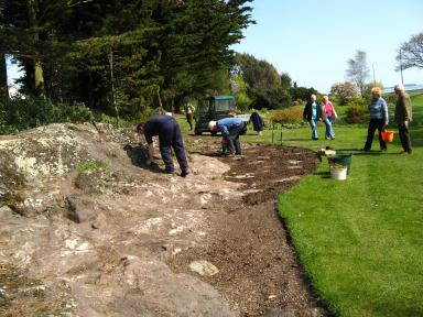 Scree bed planting