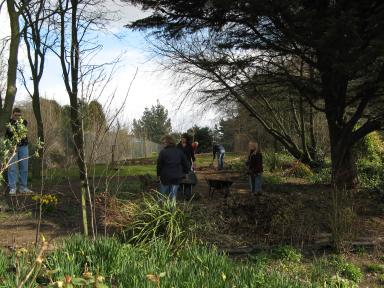 Inland revenue staff at work in the woodland area